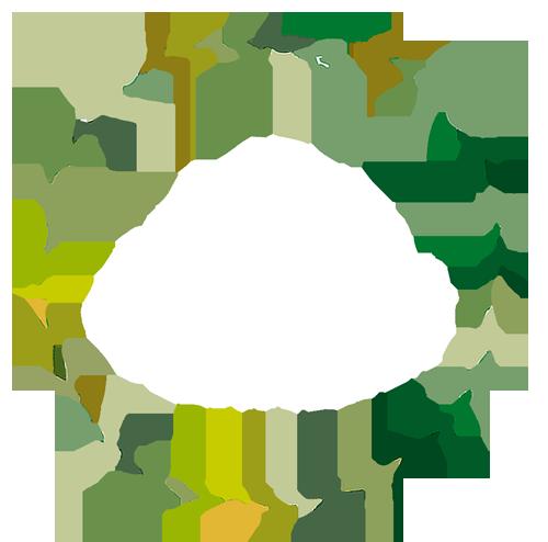 oleatherm.com