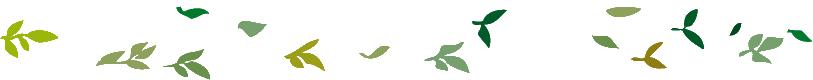 envol-couronne