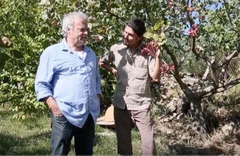 Thierry Casanovas et Raphael sur les fruits oubliés